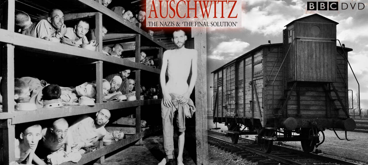 Auschwitz The Nazis and the Final Solution 2