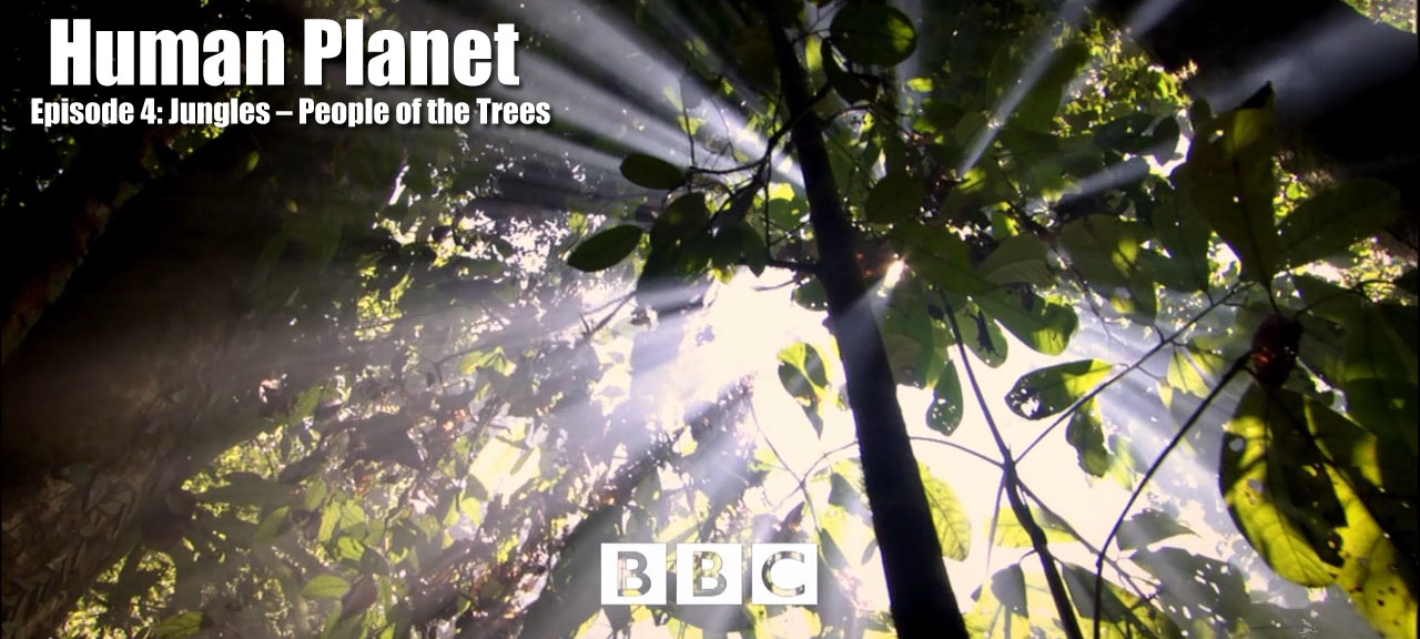 Episode 4 Jungles – People of the Trees