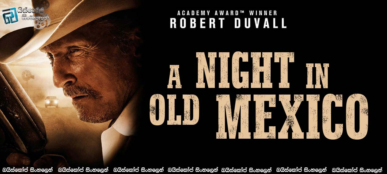 A Night In Old Mexico (2013)