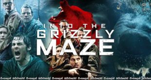 Into-the-Grizzly-Maze-(2015)