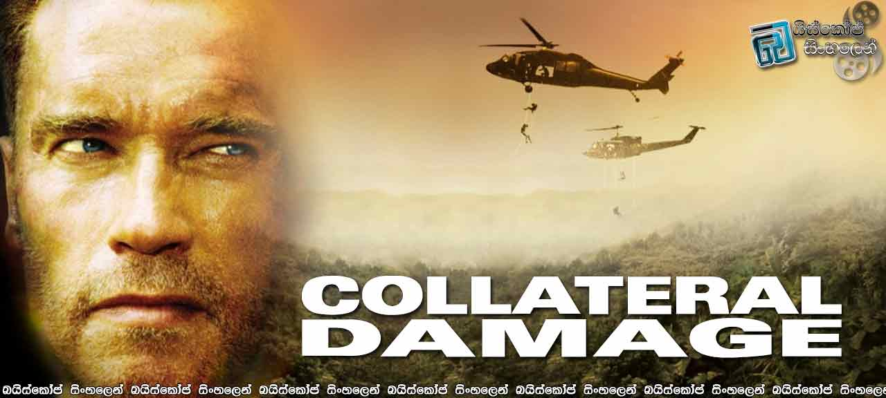 Collateral-Damage-(2002)