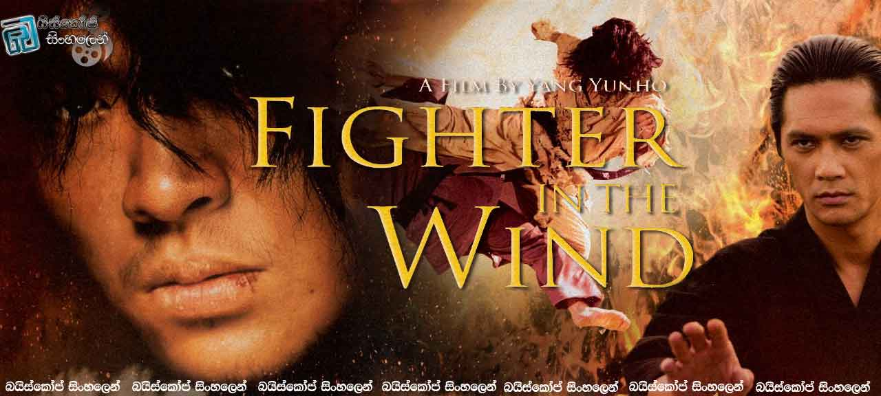 Fighter in the Wind _(2004)